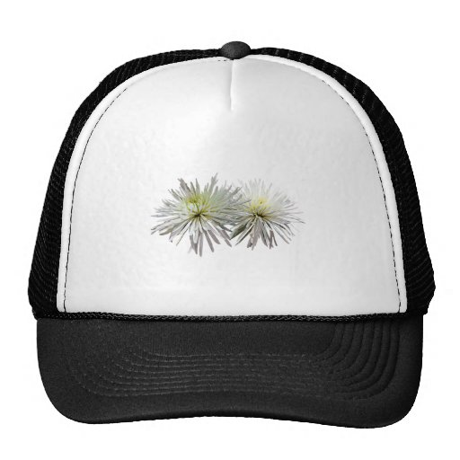 Two White Spider Mums Mesh Hat