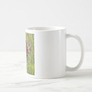 Two White Tail Deer Coffee Mug