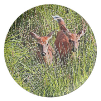 Two White Tail Deer Party Plates