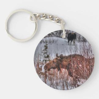 Two Wild Canadian Moose in Winter Marsh Keychain