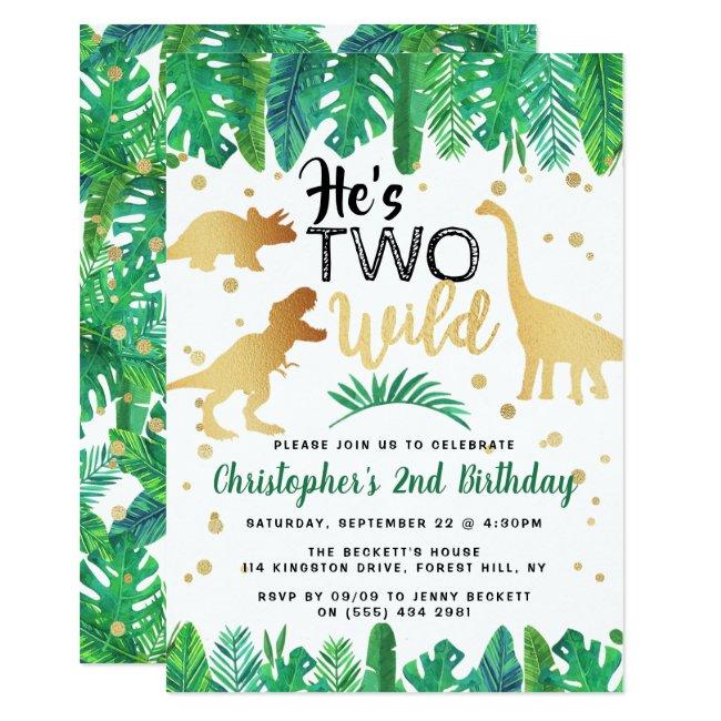 Two Wild Dinosaur Boys 2nd Birthday Invitation