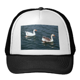 Two Wild Gray Geese Swimming Together Trucker Hat