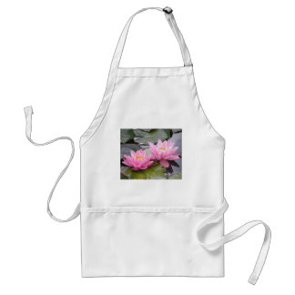 Two wild pink waterlilies in a pond adult apron