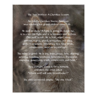 TWO WOLVES CHEROKEE TALE Art Poster