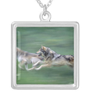 Two wolves in mountain meadow silver plated necklace