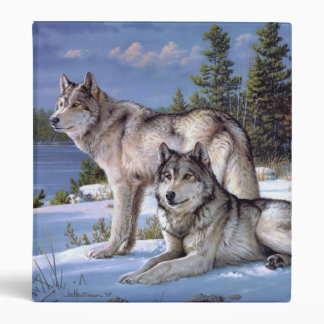 Two wolves in winter Siberian Binder