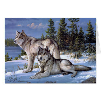 Two wolves in winter Siberian Card