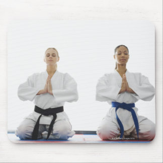 Two women meditating mouse pad