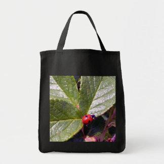 Two Years Old Ladybug Bag