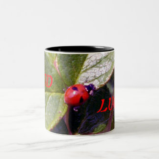 Two Years Old Ladybug Mug