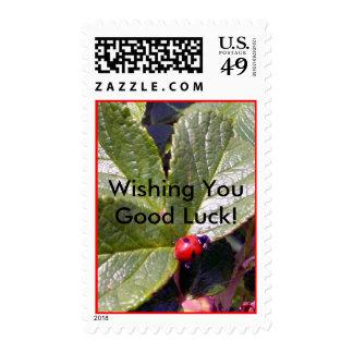 Two Years Old Ladybug Stamp