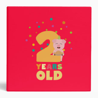 Two Years Second Birthday Party Zkgcl 3 Ring Binder