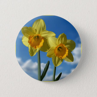 Two yellow Daffodils 2.2 Pinback Button