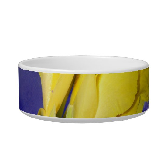 Two Yellow Flowers Blue Sky Bowl