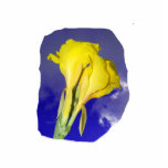 Two Yellow Flowers Blue Sky Photo Sculptures
