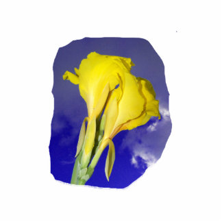 Two Yellow Flowers Blue Sky Standing Photo Sculpture