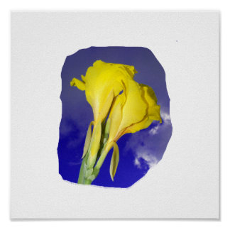 Two Yellow Flowers Blue Sky Posters