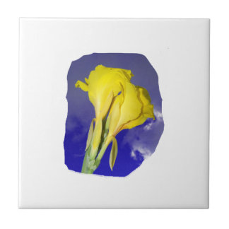 Two Yellow Flowers Blue Sky Small Square Tile