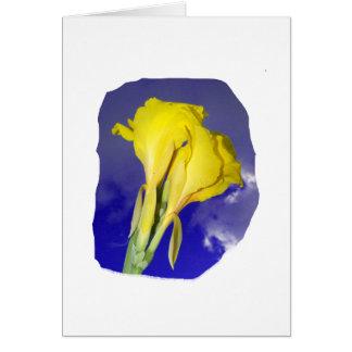 Two Yellow Flowers Dark Blue Sky Photo Greeting Card