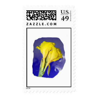 Two Yellow Flowers Dark Blue Sky Photo Postage Stamps