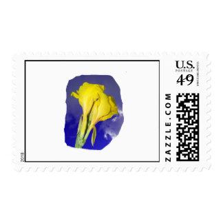 Two Yellow Flowers Dark Blue Sky Photo Stamp