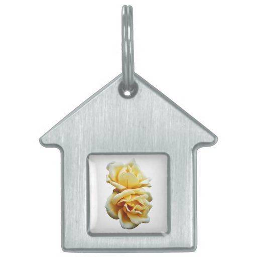 Two Yellow Roses Pet Tag