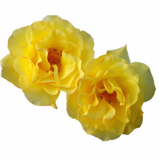 Two Yellow Roses Statuette