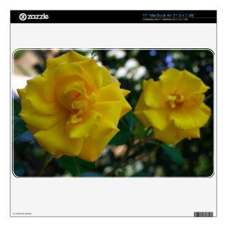 Two Yellow Roses with Leaves - flower photography Decals For MacBook