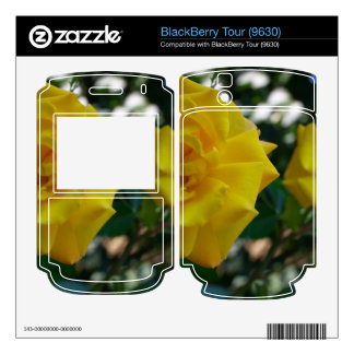 Two Yellow Roses with Leaves - flower photography Skin For BlackBerry Tour