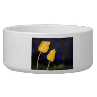 Two Yellow Tuilps Dog Water Bowl