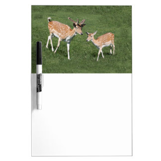 Two Young Deer Dry-Erase Boards