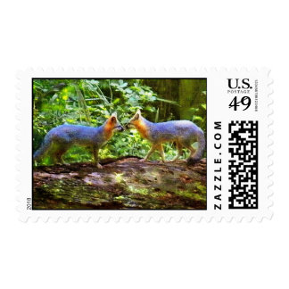 TWO YOUNG FOXES POSTAGE