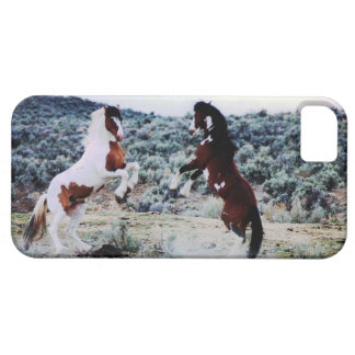 Two Young Horses Playing iPhone SE/5/5s Case