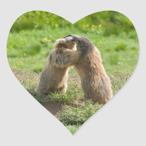 two young marmots heart stickers
