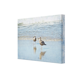 Two Young Seagulls Enjoying Sun and Surf Canvas Print