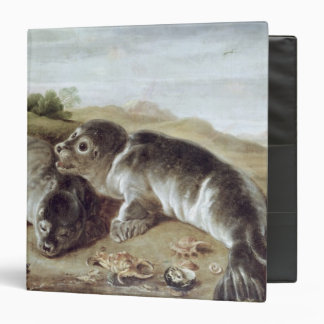 Two Young Seals on the Shore c 1650 Binders