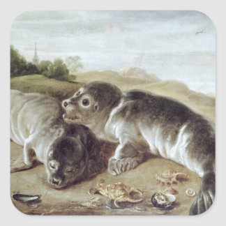 Two Young Seals on the Shore, c.1650 Square Sticker
