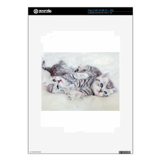 Two young shorthair silver tabby cats play lying iPad 2 skin