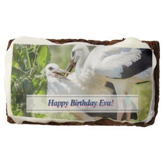 Two Young Storks, Birds Animal Photography Chocolate Brownie