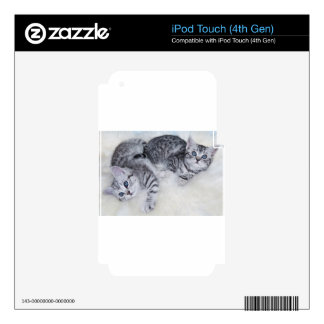 Two young tabby cats lying lazy together on fur skins for iPod touch 4G
