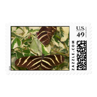 Two zebra butterflies on foliage postage stamps