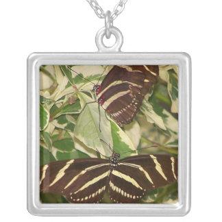 Two zebra butterflies on foliage square pendant necklace