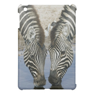 Two Zebras (Equus quagga) drinking water, iPad Mini Covers