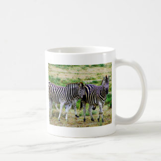 Two Zebras Mug