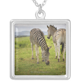 Two zebras, South Africa Square Pendant Necklace