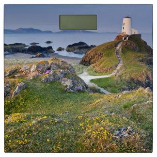 Twr Mawr Lighthouse On Llanddwyn Island Bathroom Scale