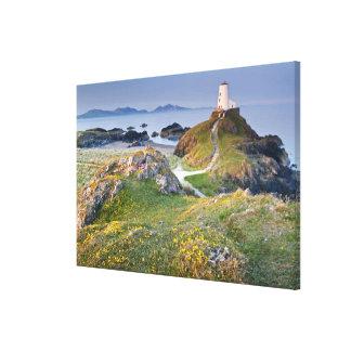 Twr Mawr Lighthouse On Llanddwyn Island Canvas Print
