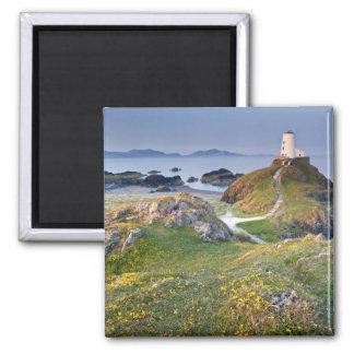 Twr Mawr Lighthouse On Llanddwyn Island Magnet