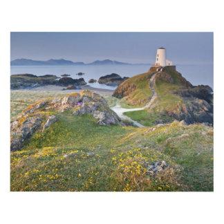 Twr Mawr Lighthouse On Llanddwyn Island Panel Wall Art