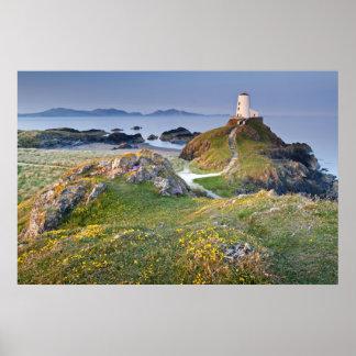 Twr Mawr Lighthouse On Llanddwyn Island Poster